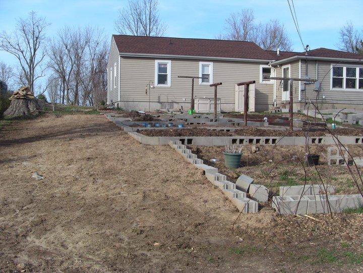 Garden 2011 21737713