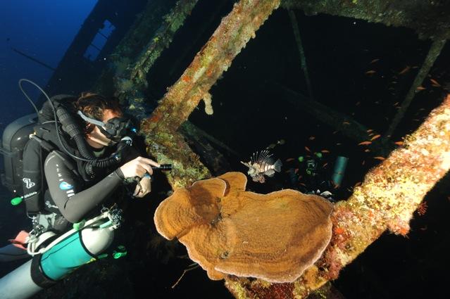 CR  croisière epaves profondes, brothers,daedalus,ephingstone mer rouge avec ALDO FERRUCCI 25 sept au 02 octobre 2010 Dsc_4711