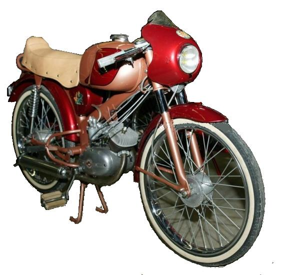 restauration paloma Motori10