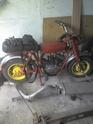 BMC Motori 07060810