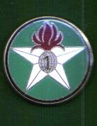 Insignes de compagnies sahariennes, portées, montées. 10_cop10