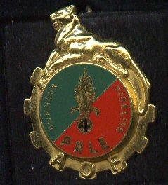 Insignes d'unité spécialisées. 121_4e10