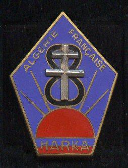 Insignes d'unité spécialisées. - Page 2 237_ha10