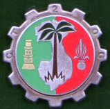 Insignes d'unité spécialisées. - Page 2 352_2e10