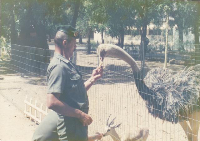 La LEGION dans l'opération EPERVIER au TCHAD -acec quelques photos Img19