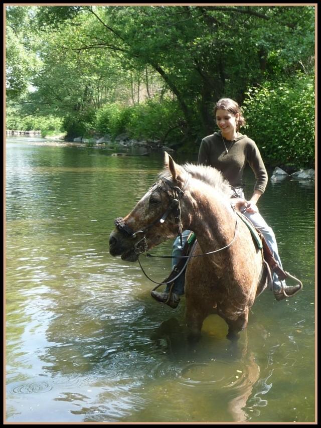 Les chevaux et l'eau, venez votez... Mai_2010