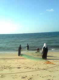 نساء صيادات على بحر غزة 1261