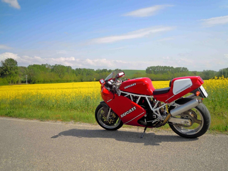 Ducati Deux soupapes - Page 6 Immagi10