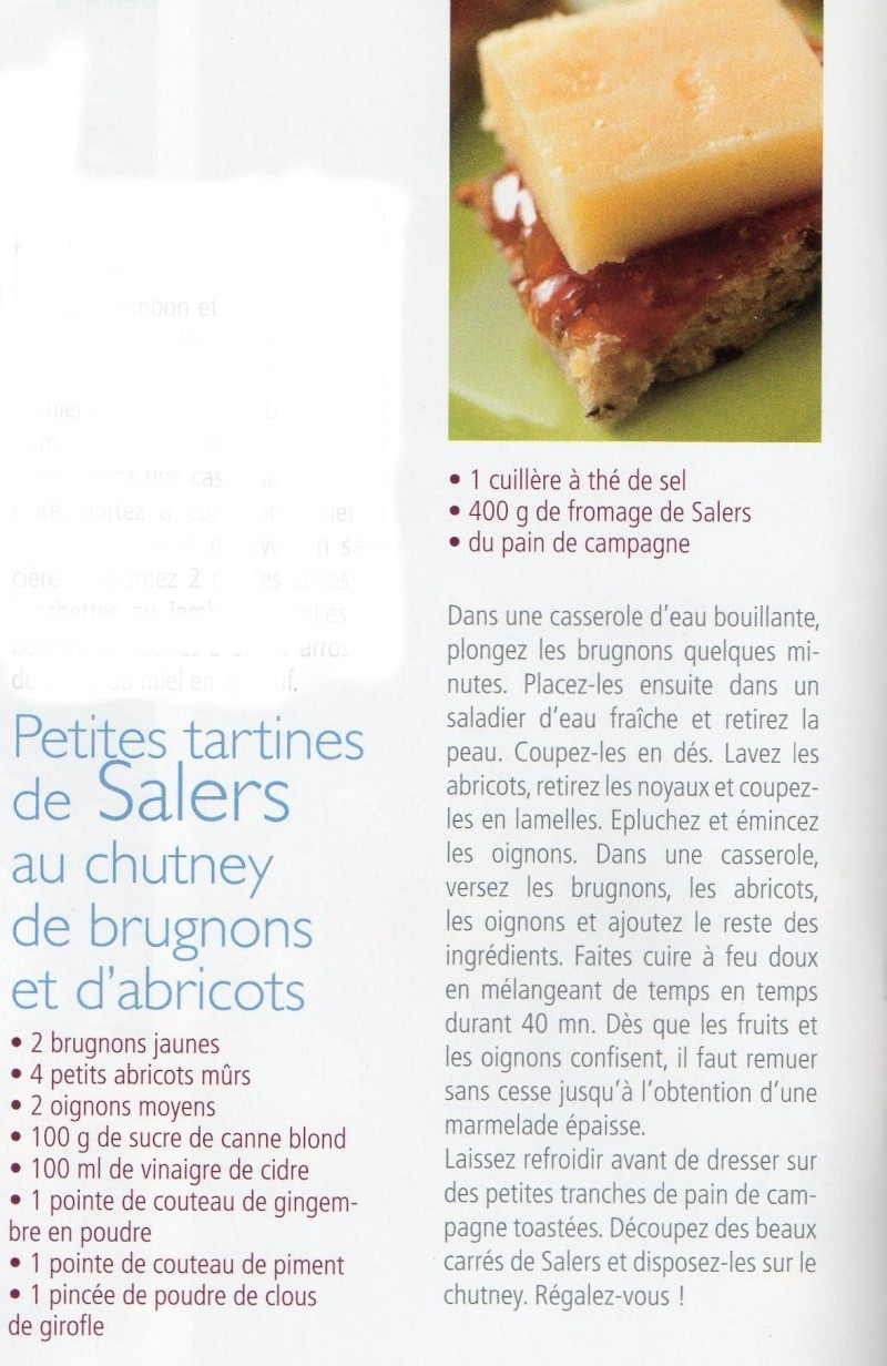 Tartines de Salers au chutney de brugnons et d'abricots Tartin10