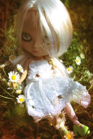 [Sh] 03/05 -  Nature morte  BLYTHE Fantam13