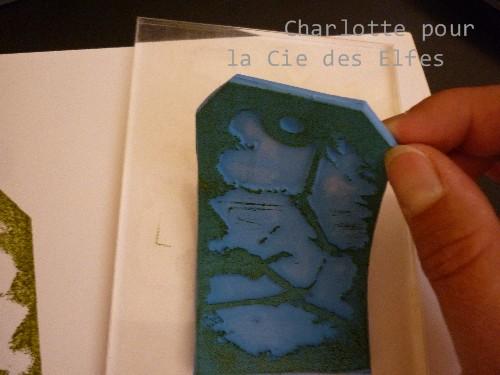 UTILISATION take peel TUTO par Charlotte P1050834