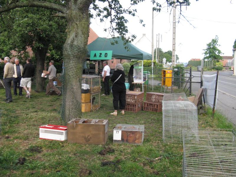 Festival des Arts et des champs, quelques photos... Img_5711
