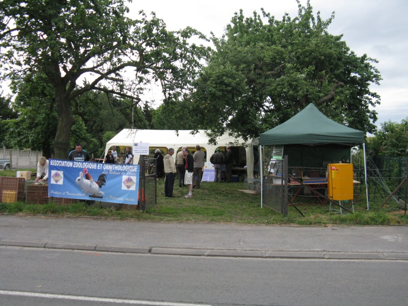 Festival des Arts et des champs, quelques photos... Img_5737