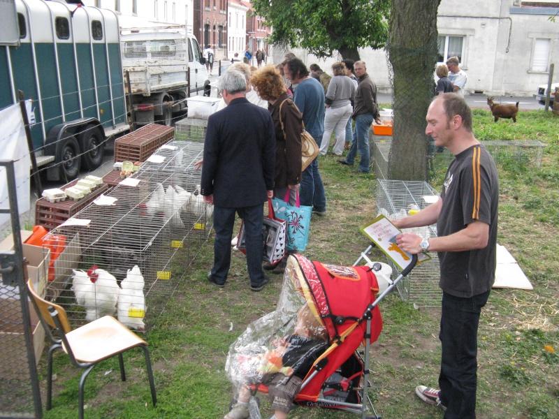 Festival des Arts et des champs, quelques photos... Img_5738