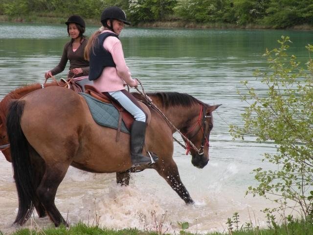 NOUVEAU CONCOURS PHOTOS : Les chevaux et l'eau - Page 2 Dscn0810