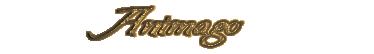 Ficha Modelo Animag10