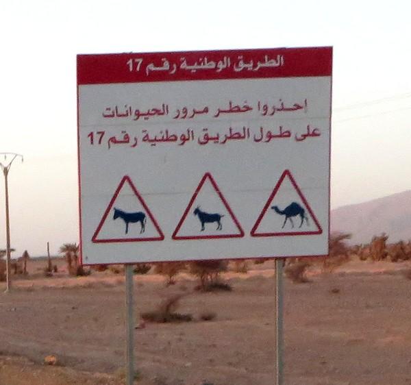 [Carburant, Routes, Police] ROUTE ENTRE TATA ET TIZNIT Route_37