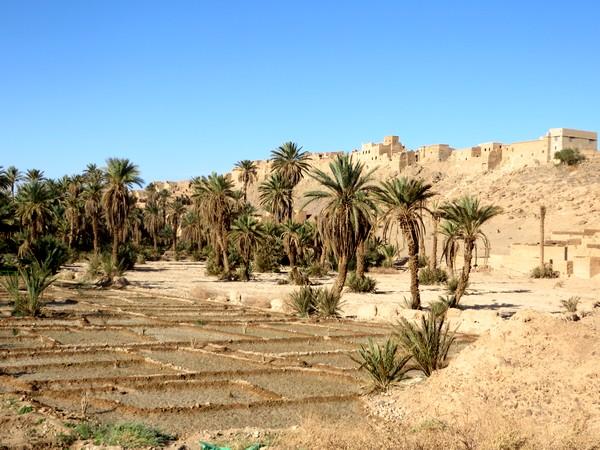 [Maroc Camp/Découvertes] TATA : MELLAH DE TAZART Tata_m12