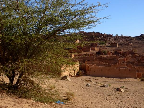 [Maroc Camp/Découvertes] TATA : MELLAH DE TAZART Tata_m14