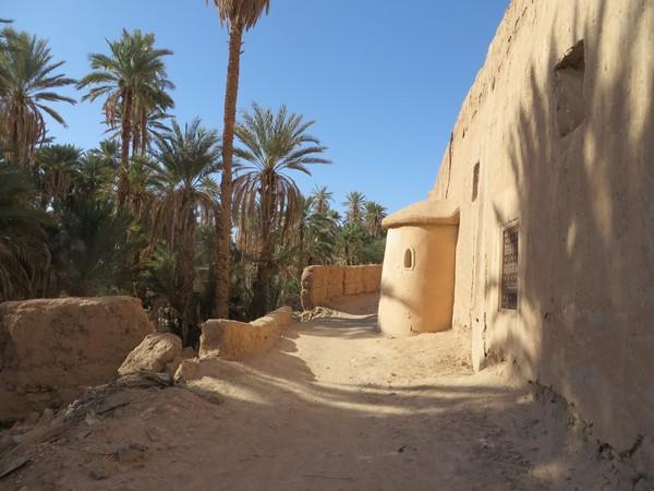 [Maroc Camp/Découvertes] TATA : MELLAH DE TAZART Tata_m15