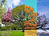 <font size=4>Climat & Environnement</font>