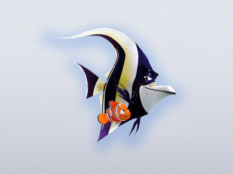 Fonds d'écran Le monde de Nemo 2022