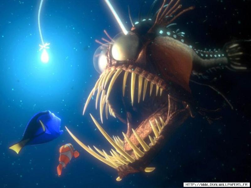 Fonds d'écran Le monde de Nemo 2220