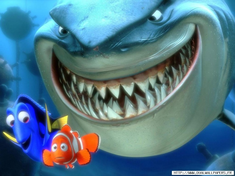 Fonds d'écran Le monde de Nemo 2419