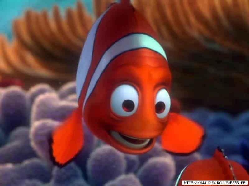 Fonds d'écran Le monde de Nemo 2816