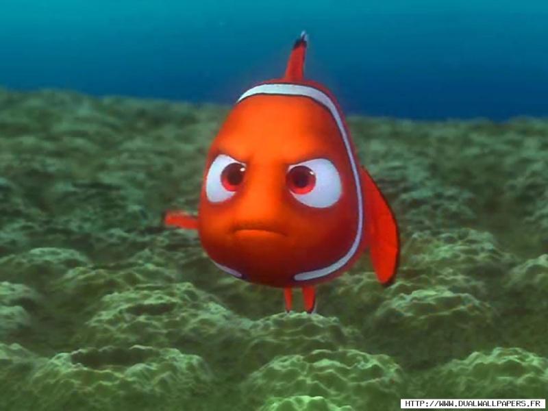 Fonds d'écran Le monde de Nemo 3016