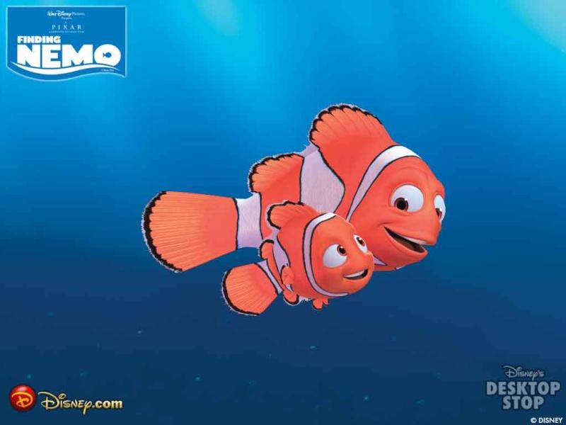Fonds d'écran Le monde de Nemo 5013