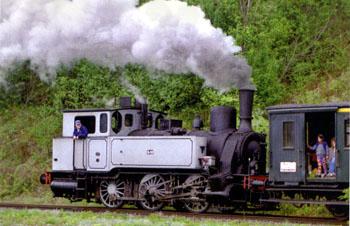 Dampftage Meiningen 2010 - Seite 3 Lok_lu10