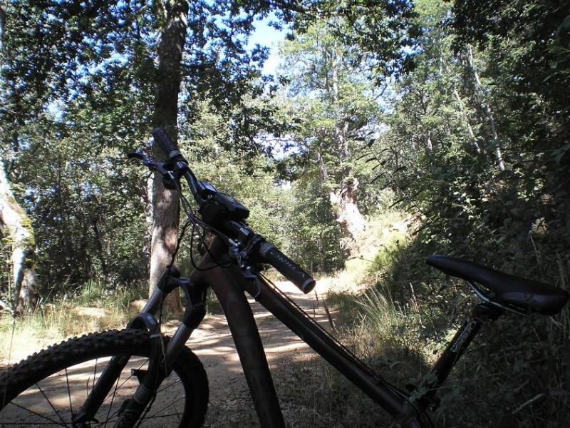 Tercera ruta - Aguilar de Campoo Montaa12