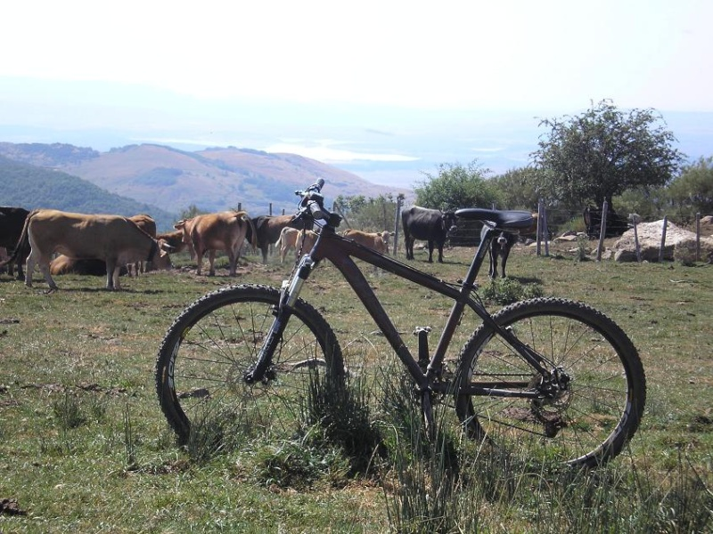 Tercera ruta - Aguilar de Campoo Montaa13