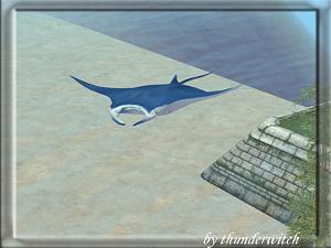 Все для аквариумов, водоемов - Страница 2 Forum372