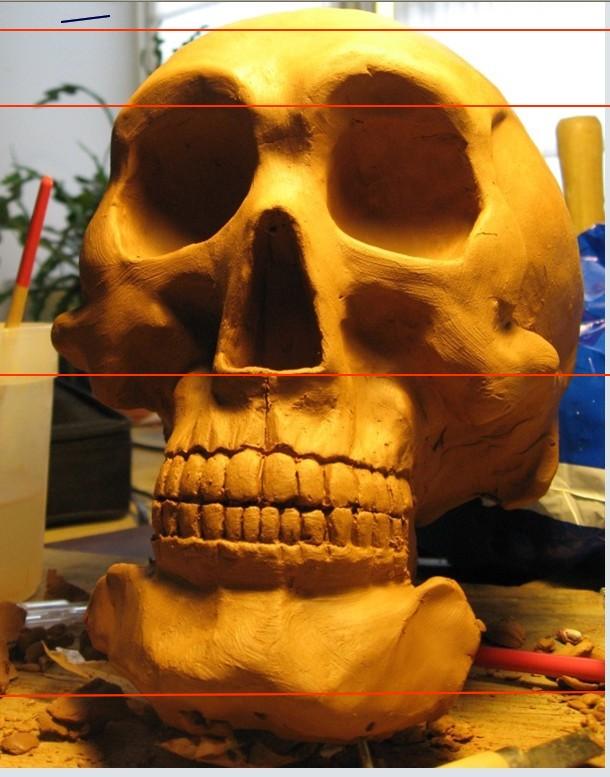 Dentaire, pas à pas. 2010-110