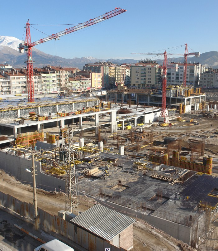 Grues Italiennes A80610