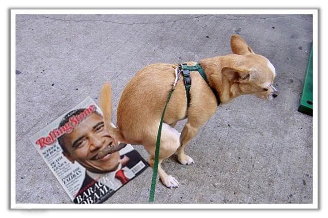 Funny Political Pix Dog-po10