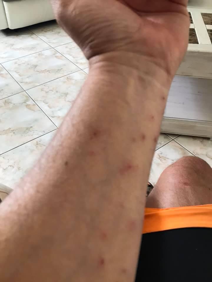 30 juin 2019 rando barisis aux bois Vtt_3015