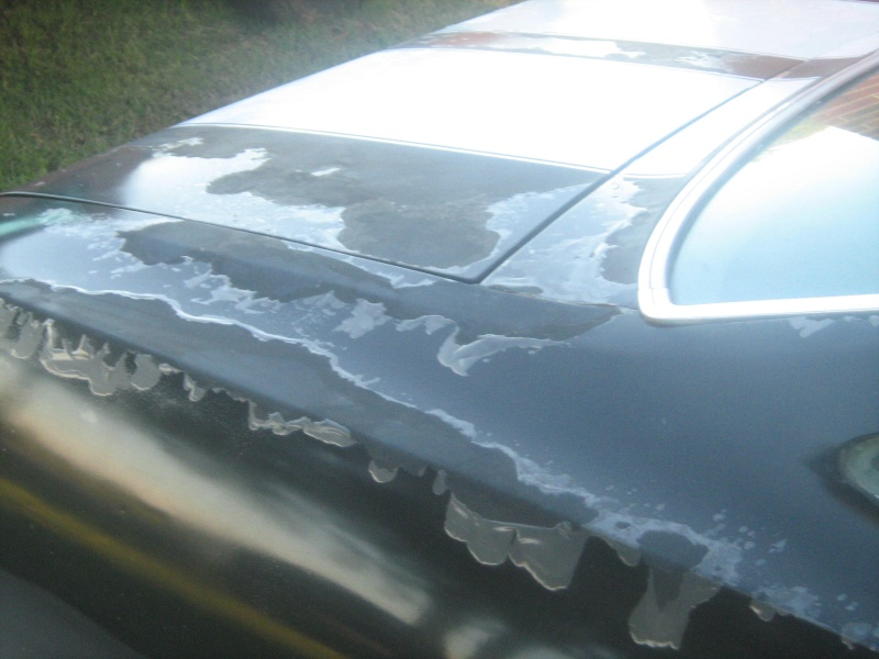 """""""My 74 Chevelle....Very poor paint work"""" 01710"""