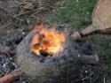 Le feu Dsc00913