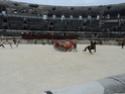 Les grand jeux romains de Nîmes 2011 Dsc02218