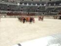 Les grand jeux romains de Nîmes 2011 Dsc02223