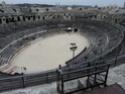 Les grand jeux romains de Nîmes 2011 Dsc02317