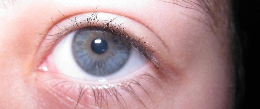 Les yeux sont le miroir de l'âme - Page 3 Img_5311