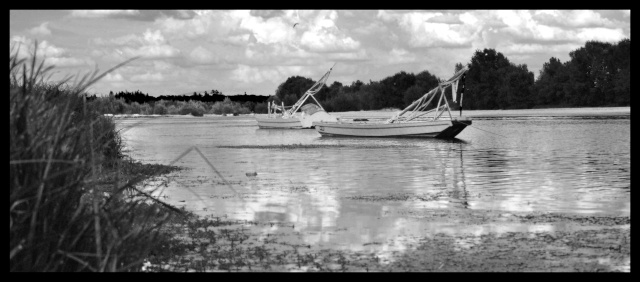 La Loire et ses Gabarres  Loire_11