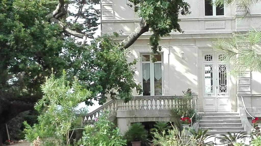 J'ai 16 ans,  je suis dans le jardin d'une villa. C'est l'été.... Jardin10