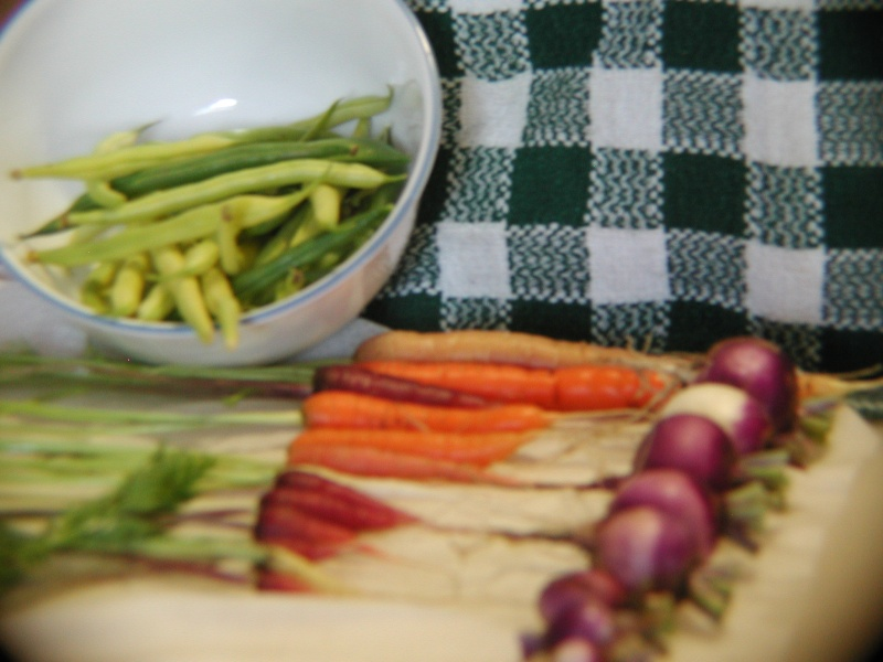 PNW Harvest P1010012