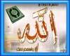 احكام وفتاوى اسلاميه