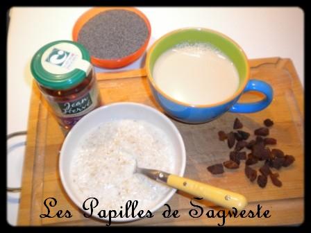 Porridge abricots secs et pavot Dscn1711